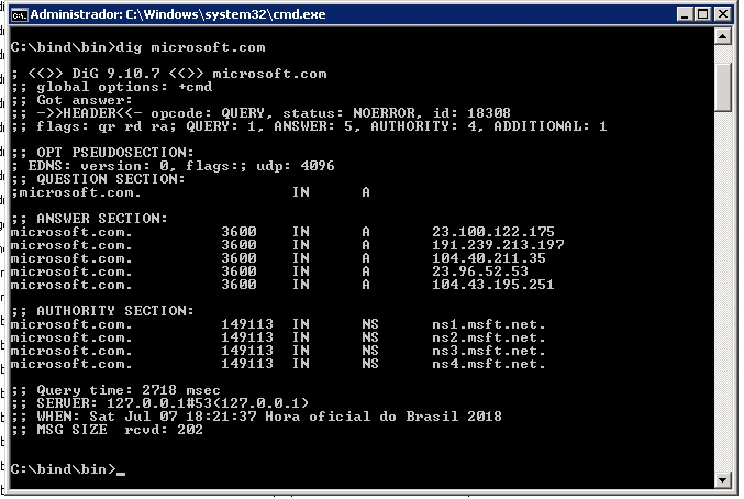 Teste ferramenta dig servidor dns local