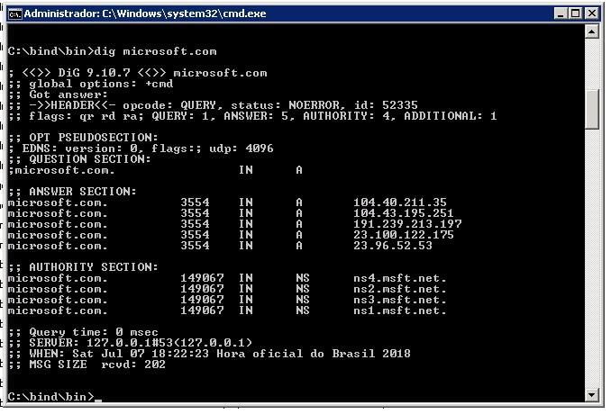 Teste ferramenta dig servidor dns local 2